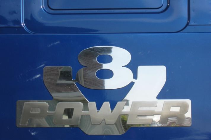 RVS logo's